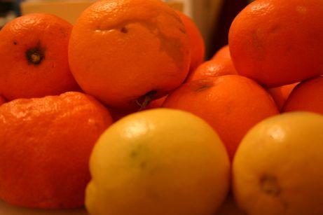 marmalade etape 1