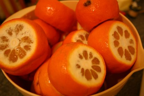 marmalade etape 2